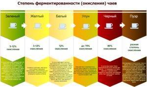 классификация по степени ферментации