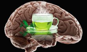 L-теанин и чай