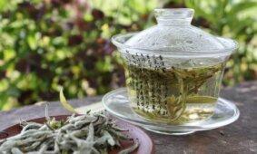 Зеленый чай эффективен в борьбе с COVID-19